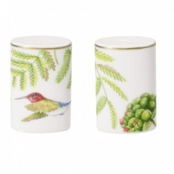 Amazonia Anmut Sale & pepe set 2pezzi - Villeroy & Boch