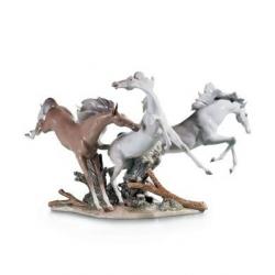 Cavalli - Lladrò