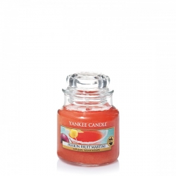 Passion Fruit Martini Giara Piccola - Yankee Candle