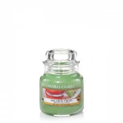 Macaron Treats Giara Piccola - Yankee Candle