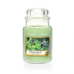 Wild MInt Giara Grande - Yankee Candle