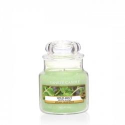 Wild MInt Giara Piccola - Yankee Candle