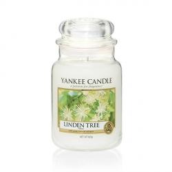 Linden Tree Giara Grande - Yankee Candle
