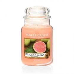 Delicious Guava Giara Grande - Yankee Candle
