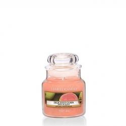 Delicious Guava Giara Piccola - Yankee Candle