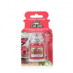 Red Raspberry, Car Jar Ultimate - Yankee Candle