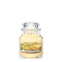 Flowers in the Sun, Giara Piccola - Yankee Candle