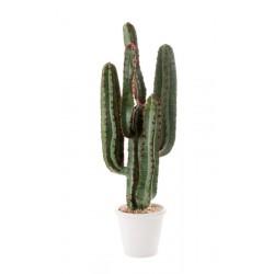 Cactus da terra piccolo Cm. 82 h. - L'oca Nera