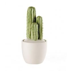 Scatolina cactus Cm. 9x18,5 h. - L'oca Nera
