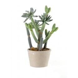 Cactus piccolo Cm. 12x31 h. - L'oca Nera