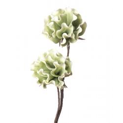 Peonia Erbacea verde Cm. 85 h. - L'oca Nera
