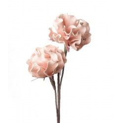 Peonia Erbacea rosa Cm. 85 h. - L'oca Nera