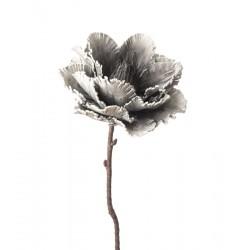 Peonia Officinalis Cm. 82 h. - L'oca Nera