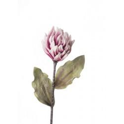 Dalia Cactus Cm. 93 h. - L'oca Nera