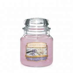 Honey Lavander Gelato, Giara Media - Yankee Candle