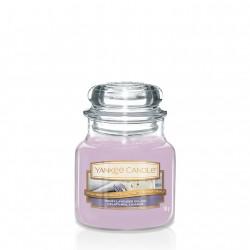 Honey Lavander Gelato, Giara Piccola - Yankee Candle