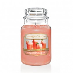 White Strawberry Bellini, Giara Grande - Yankee Candle