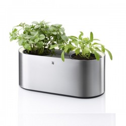 Portavasi Ambient Herbs home - Wmf