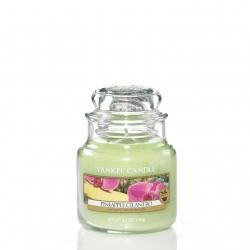 Pineapple Cilantro Giara Piccola - Yankee Candle
