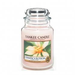 Champaca Blossom Giara Grande - Yankee Candle