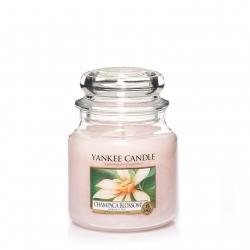 Champaca Blossom Giara Media - Yankee Candle