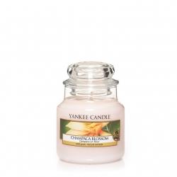 Champaca Blossom Giara Piccola - Yankee Candle