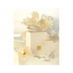 Confezione regalo 11x8 - Thun