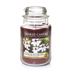 Madagascan Orchid Giara Grande - Yankee Candle