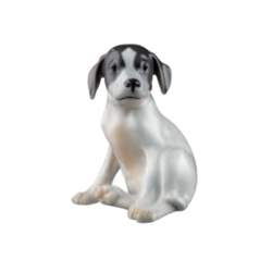 Cucciolo di Pointer - Royal Copenhagen